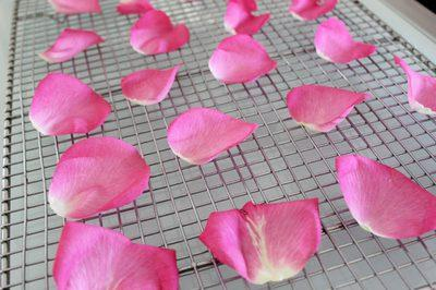 comment faire sécher des petales de roses à l'air