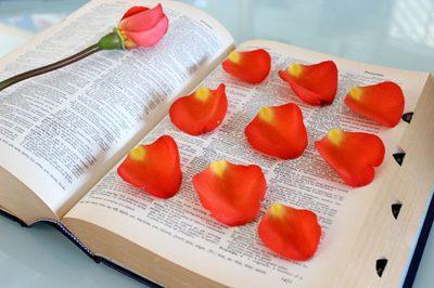 faire sécher les pétales de rose dans un livre
